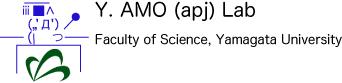 Y.Amo(apj) Lab